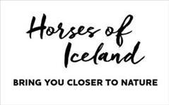 Horses of Iceland program at Landsmót