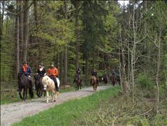 Annual Leisure Riding Meeting 2019