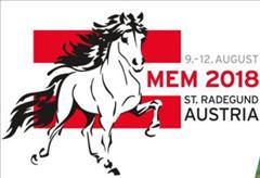 Mid European Championships (MEM)