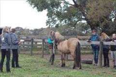 First breeding seminar in Australia