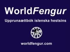 Landsmot videos in WorldFengur