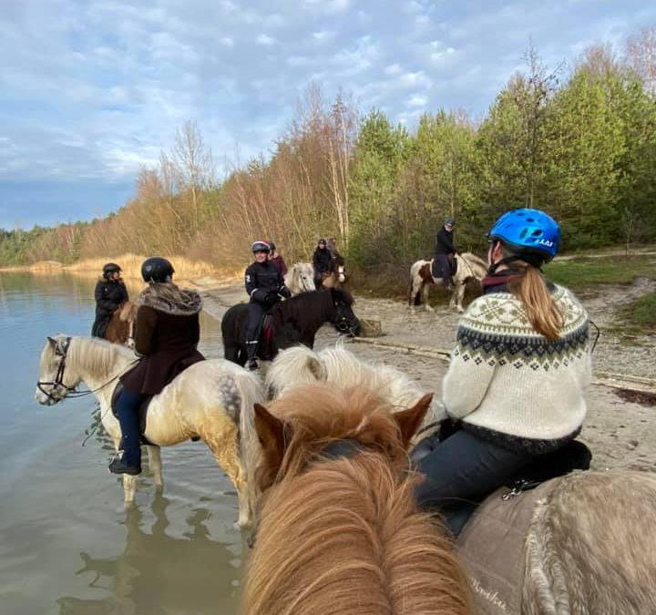 FEIF Virtual Ride to Landsmót