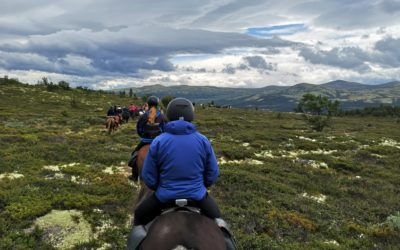 "Day two at the ""Fjellfestival med islandshest"" in Norway"