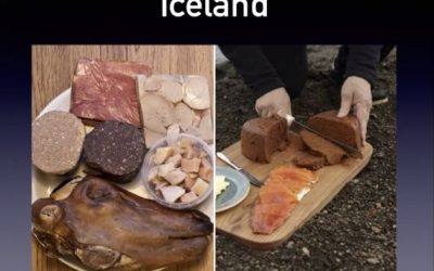 FEIF online seminar 'Why Iceland?'